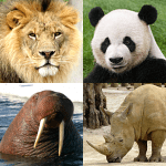 Animals Quiz – Learn All Mammals, Birds and more!